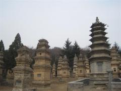 Shaolintemplet, Pagodaskogen