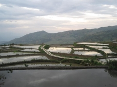 Yunnan, Yuanyangs risterasser