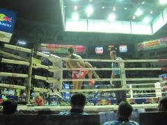 Thaiboxning