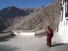 Även munkar har mobiler, Drepung, Lasa