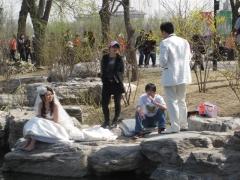 Yuyuantan parken