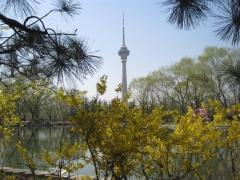 Yuyuantan parken, CCTV i bakgrunden